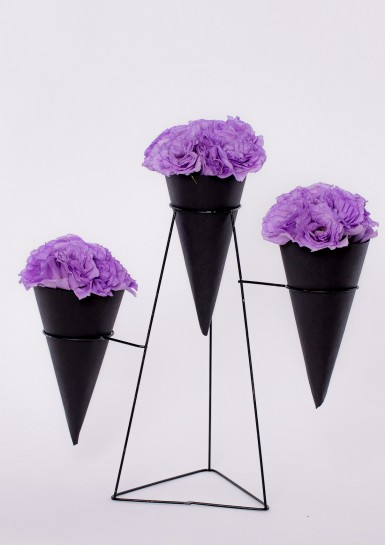 #6F4A0560 Flower Cones #3