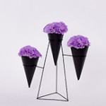 #6F4A0560 Flower Cones #3 small