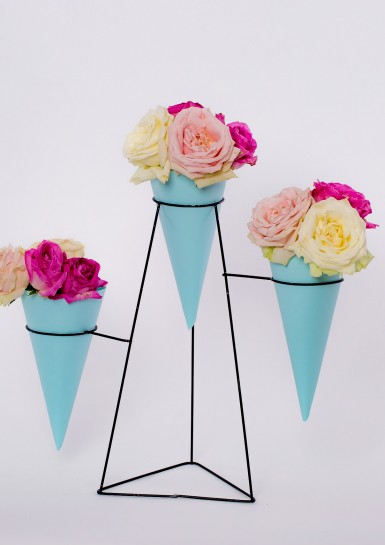#6F4A0599 Flower Cones #2
